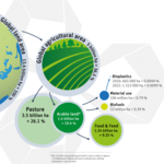 Land use for New Economy bioplastics 2016 and 2021, Quelle: IfBB